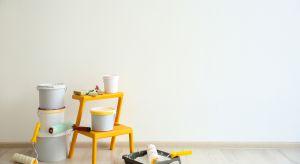 Kupić białą farbę – wydawałoby się, że nie ma nic prostszego. Tymczasem pośród dostępnych na półce produktów białe farby albo nie pokrywają dobrze ścian, albo szybko odpadają, albo co najdziwniejsze – po prostu nie są białe.