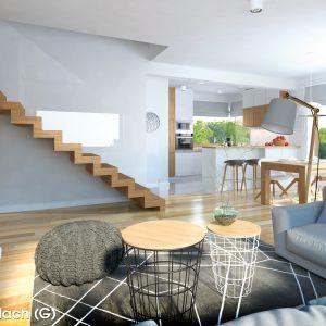 Projekt: Dom w szmaragdach (G). Wizualizacja: Archon+