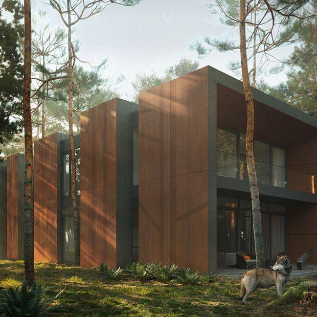 Dom jak las otoczony sosnami - interesujący projekt