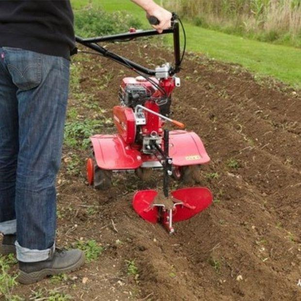 Ogród na wiosnę - porady o przygotowaniu gleby pod nowe uprawy