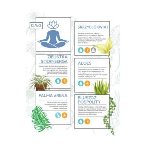 Ukryte supermoce roślin - dla Twojego ciała i umysłu.  Infografika ShopAlike