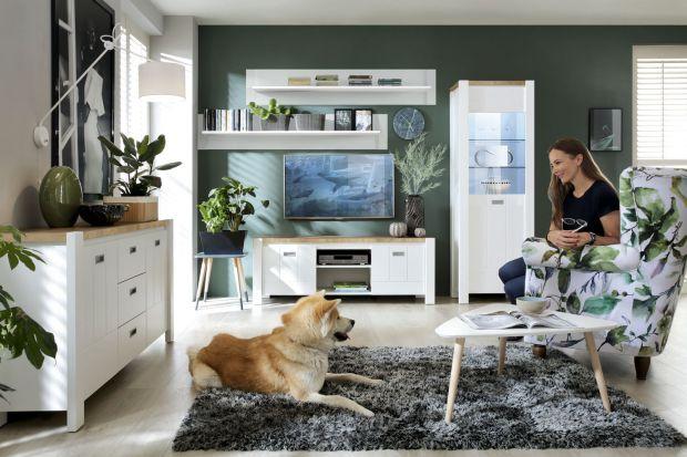 Aranżując mieszkanie rzadko kiedy bierzemy pod uwagę naszych czworonożnych przyjaciół. I chociaż często traktujemy kota czy psa jak członka rodziny, zapominamy niestety o potrzebach tych domowników.