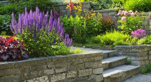 Jeśli zdecydujemy się na wykonanie schodów terenowych – należy zdawać sobie sprawę, że będzie się to wiązać z koniecznością podjęcia szeregu decyzji projektowych.