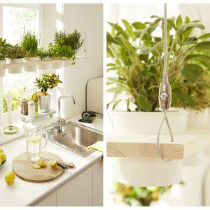 Świeże zioła w kuchni: samodzielnie robimy podwieszaną półkę na doniczki. Fot. Bosch