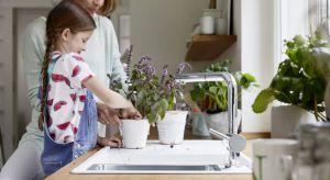 Indoor gardening to hobby, które znajduje coraz większe grono zwolenników. Założenie własnej uprawy ma wiele zalet i jest możliwe nawet na małym metrażu.
