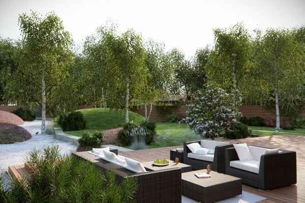 Piękny ogród: zobacz dobre projekty otoczenia domu