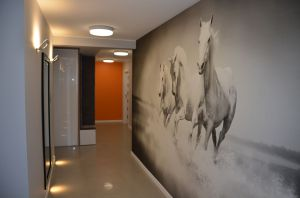 Projekt i zdjęcia: Estera i Robert Sosnowscy, Studio Projekt