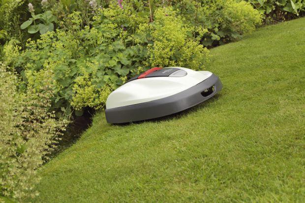 Koszenie trawnika - wykorzystaj możliwości robota koszącego
