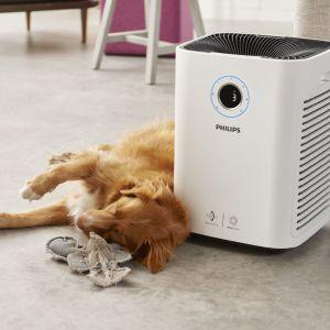 Oczyszczacz powietrza AC5659/10. Fot. Philips