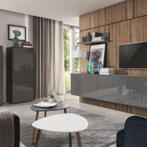 Nowoczesny system mebli Simi to oferuje komody, szafki RTV oraz półki o prostej linii w modnej kolorystyce. Fot. Wajnert Meble