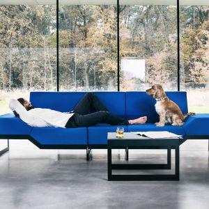 Belong to sofa, która pozwala się układać w rozmaite kompozycje –  jedną całość albo wygodne wyspy. Fot. Vank