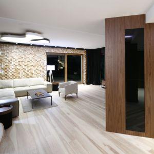 Aranżacja ściany w salonie. Projekt: Jan Sikora. Fot. Bartosz Jarosz