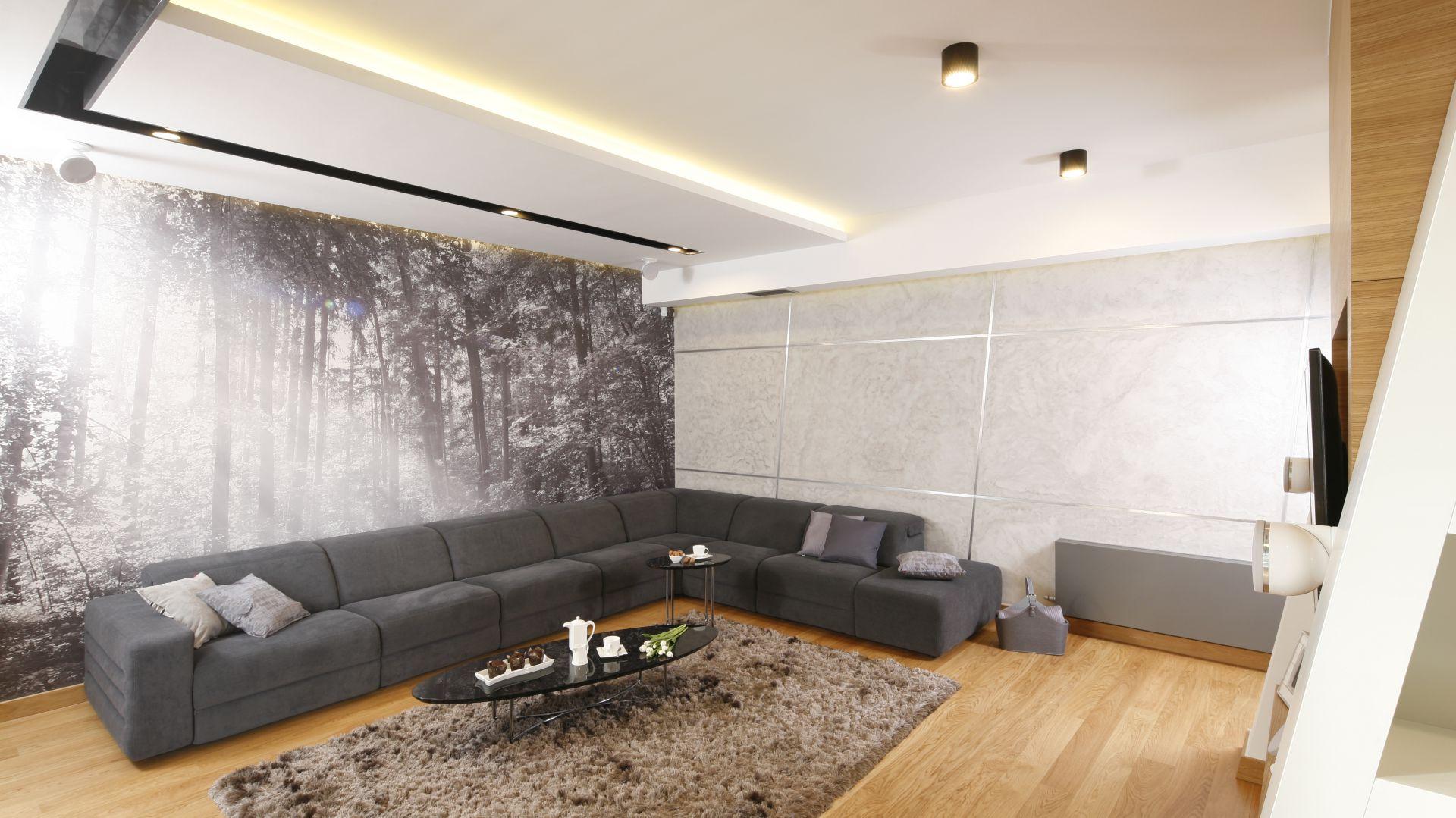 Aranżacja ściany w salonie. Projekt: Monika i Adam Bronikowscy. Fot. Bartosz Jarosz