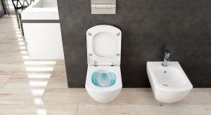 Seria Anemon znana jest głównie dzięki bateriom łazienkowym o charakterystycznym kubistycznym kształcie, w trzech wersjach kolorystycznych: chromie, czerni łączonej z chromem i bieli z chromem.
