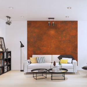 Ściana pokryta farbą o efekcie rdzy. Tą metodą warto wykończyć jedynie element ściany, która ma przykuwać uwagę. Fot. Francesco Guardi Collezione
