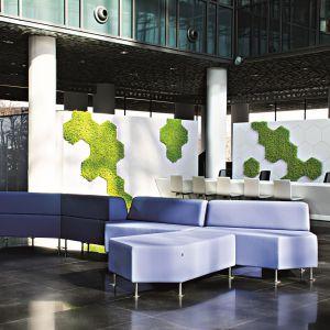 Przestrzenie biurowe Urzędu Marszałkowskiego Województwa Wielkopolskiego z wertykalnym ogrodem z jasnozielonym mchem w skupiskach niczym plastry miodu to projekt będący efektem współpracy Artes Design i SZARA/Studio. Fot. materiały prasowe