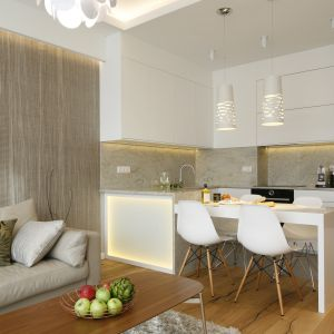 Zróżnicowane okładziny ścienne i podłogowe wyznaczają w tym mieszkaniu poszczególne strefy funkcjonalne. Projekt Agnieszka Hajdas-Obajtek. Fot. Bartosz Jarosz