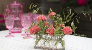 Pelargonie świetnie nadają się do letnich dekoracji, ponieważ dzięki swoim cudownym kolorom i bogatym kwiatom wpisują się w letnią aurę i potęgują pozytywne emocje. Poza tym można je wyeksponować w doniczkach lub jako kwiaty cięte, a szeroka