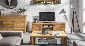 Szukasz pomysłu na nowe meble do salonu? Zobacz koniecznie naszą galerię inspiracji.