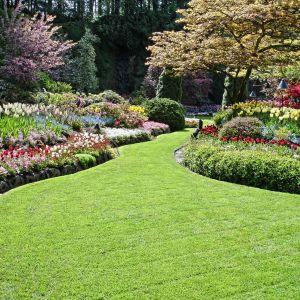 Piękny ogród. Fot. Shutterstock