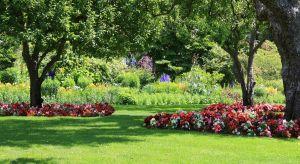 Wiosna i lato w ogrodzie to malowniczy, ale też najbardziej pracowity okres. Przydomowe otoczenie oszołomi nas bogactwem kwiatów i zapachóww zamian za trud włożony w jego pielęgnację.Polecamy przeglądnarzędzi i maszyn, które znacznie uspr