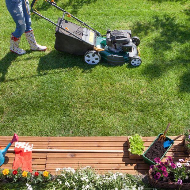 Piękny ogród: poznaj zalety dobrej kosiarki