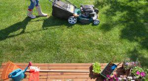 Marzymy o pięknym, przypominającym zielony dywan trawniku. Bez systematycznego koszenia można jednak o tym zapomnieć. Dlatego właśnie kosiarka jest podstawowym wyposażeniem właściciela każdego ogrodu.