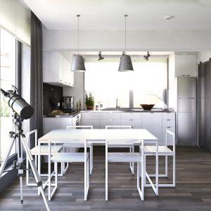W jadalni zaprojektowano białe, nowoczesne meble. Dom Ariel 4. Projekt: arch. Tomasz Sobieszuk. Fot. Domy w Stylu