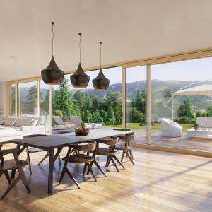 Wielkowymiarowe przeszklenia Innoview wykonane są z połączenia naturalnego drewna i aluminium; dzięki maksymalnym rozmiarom 12x2,8 m oferują ogromne pole widoku. Fot. Fakro