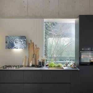 Wyposażenie kuchni: urządzenia z linii Maris. Fot. Franke