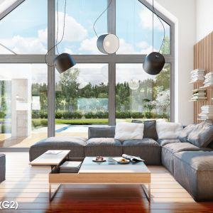 Projekt: Domu w felicjach (G2). Fot. Archon+