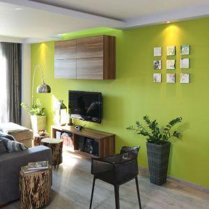 Soczyście zielona ściana w salonie to mocny akcent i źródło pozytywnej energii wnętrza. Projekt: Arkadiusz Grzędzicki. Fot. Bartosz Jarosz