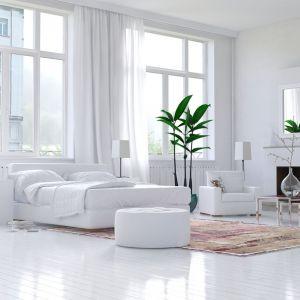 Total look w salonie - tutaj króluje biel. Fot. Polifarb Kalisz