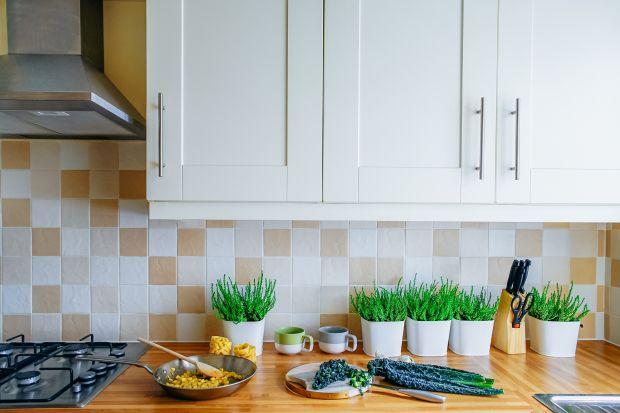 Biała kuchnia z drewnianym blatem - klasyk, który nie wychodzi z mody