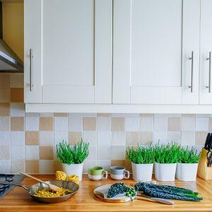 Biała kuchnia z drewnianym blatem.
