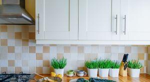 Białe wnętrza, zwłaszcza gdy chodzi o kuchnię, od lat cieszą się niesłabnącą popularnością.