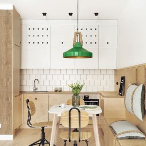 Wykonane ze sklejki proste zabudowy nadają wnętrzom oryginalny charakter. Drugi mocny akcent w mieszkaniu stanowi zieleń. Projekt: Maka Studio (Daria Pawlaczyk, Aleksandra Kurc). Fot. Tom Kurek