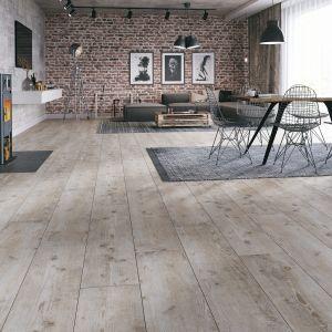 Kolekcja Villa doda każdemu wnętrzu odrobinę luksusu. Panele w dekorach imitujących naturalne drewno, a także beton, będą stanowić i elegancki akcent w mieszkaniu. Wyprofilowane krawędzie desek w połączeniu z przyjemną strukturą powierzchni tworzą pełen harmonii efekt estetyczny. Dostępne w ofercie firmy RuckZuck. Cena: od 56,11 zł/m2. Fot. RuckZuck