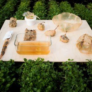SCOBY może służyć do pakowania i przechowywania żywności. Fot. SWPS