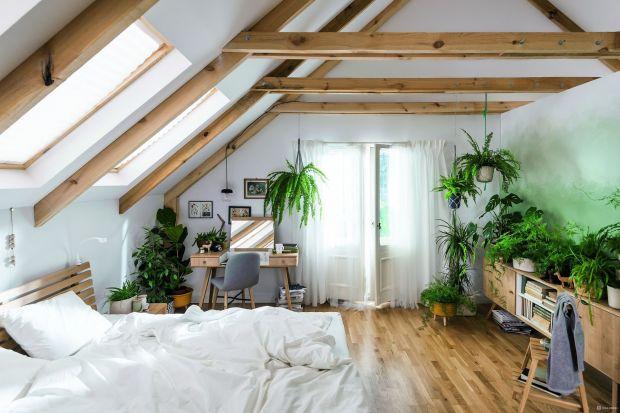 Bliżej natury - stwórz swój domowy ekosystem