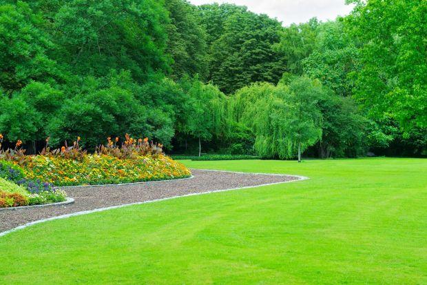 Piękny ogród - radzimy jak go zaprojektować i pielęgnować
