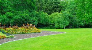 Podstawą kompozycji każdego ogrodu jest jego funkcjonalność. Zaplanujmy go tak, aby wszystkie jego elementy były komfortowe, a utrzymanie i pielęgnacja nie były zbyt problematyczne.