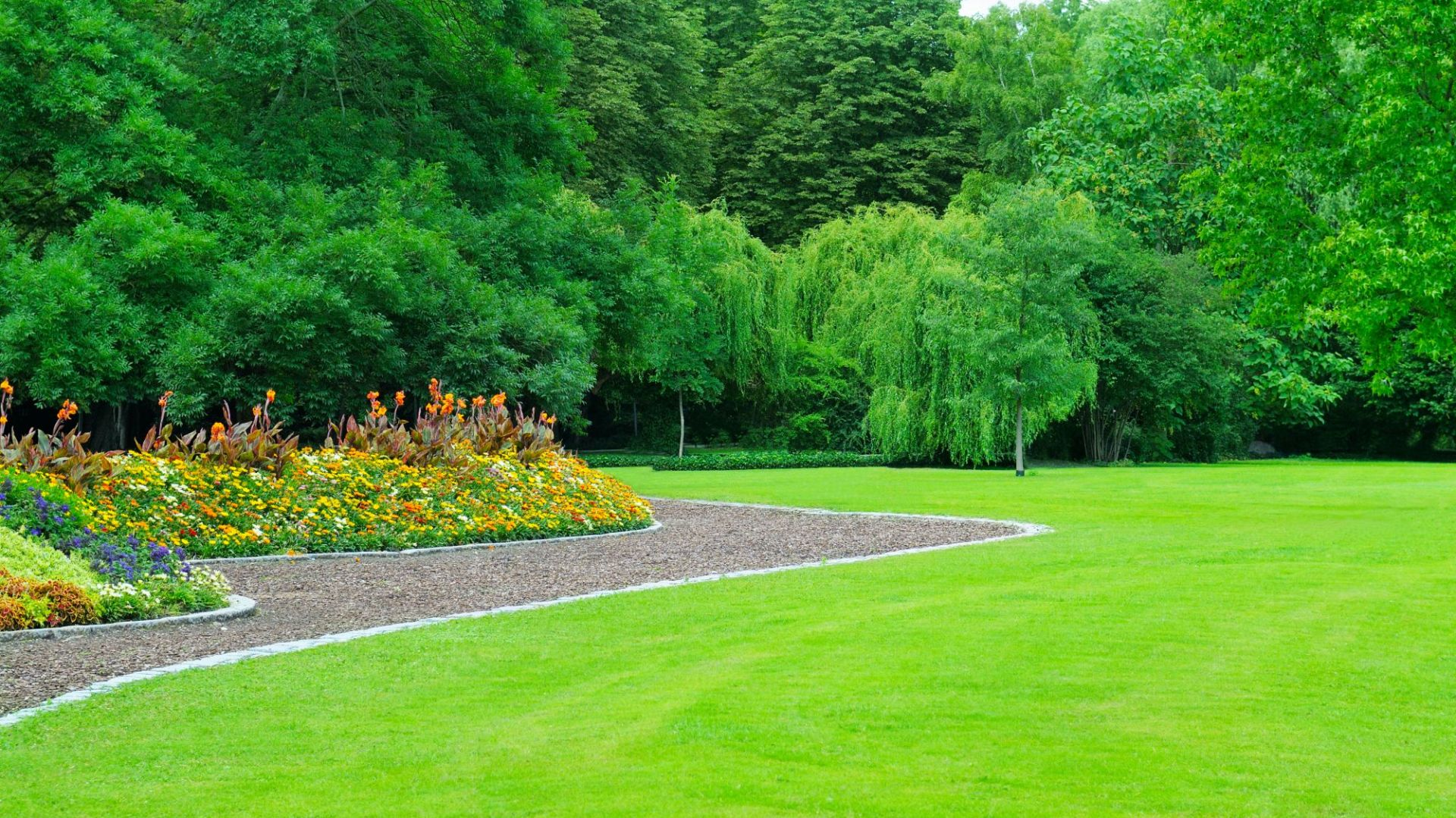 Projekt i pielęgnacja ogrodu. Fot. Shutterstock