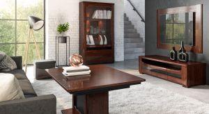 W salonie przyjmujemy gości, spędzamy też czas, relaksując się. Tu bezwzględnie zawsze musi więc panować idealny ład. Z pomocą przychodzą odpowiednie meble.