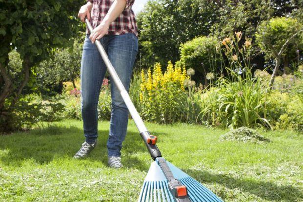 Otoczenie domu - właściwa pielęgnacja trawnika