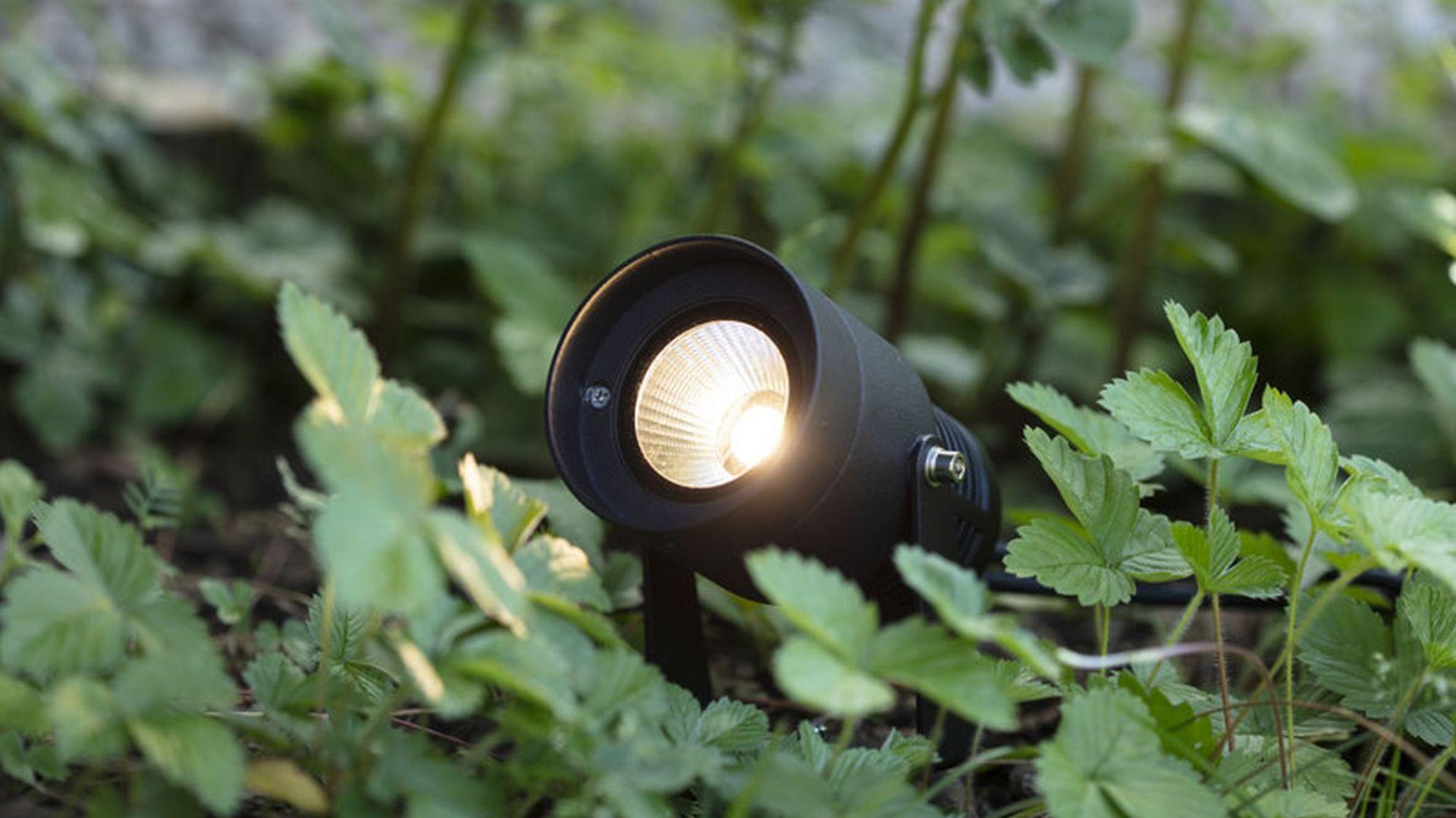 Oświetlenie w ogrodzie - system Garden 24. Fot. Markslöjd