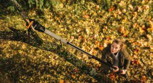 Powoli kończy się sezon letni i coraz częściej myślimy o jesiennych porządkach <br />w naszych przydomowych ogródkach. Jest kilka ważnych punktów na liście spraw do załatwienia, aby spokojnie cieszyć się pięknym ogrodem i tarasem w kol