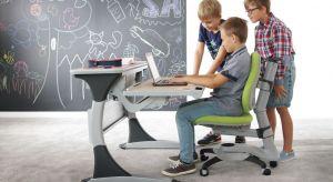 Warto pamiętać, że wygodne i ergonomiczne biurko oraz fotel, zapewnią dziecku wygodę podczas nauki, jak również pozwolą uniknąć problemów z kręgosłupem.