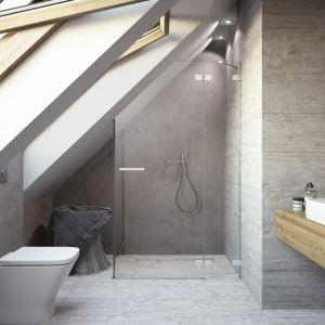 Euphoria KDJ - niestandardowa kabina prysznicowa Euphoria KDJ/Radaway.  Produkt zgłoszony do konkursu Dobry Design 2019.