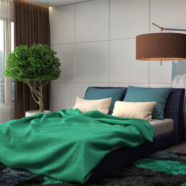 Rośliny w sypialni – uważaj, które wybierasz